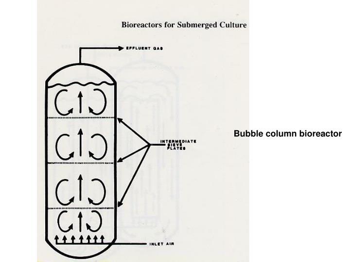 Bubble column bioreactor