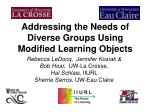 addressing the needs of diverse groups using modified learning objects