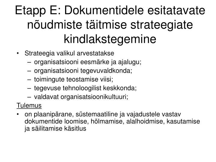 Etapp E: Dokumentidele esitatavate nõudmiste täitmise strateegiate kindlakstegemine
