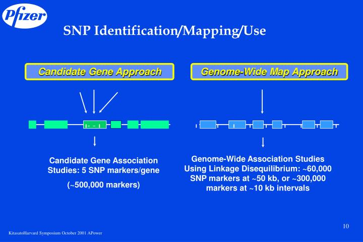 SNP Identification/Mapping/Use