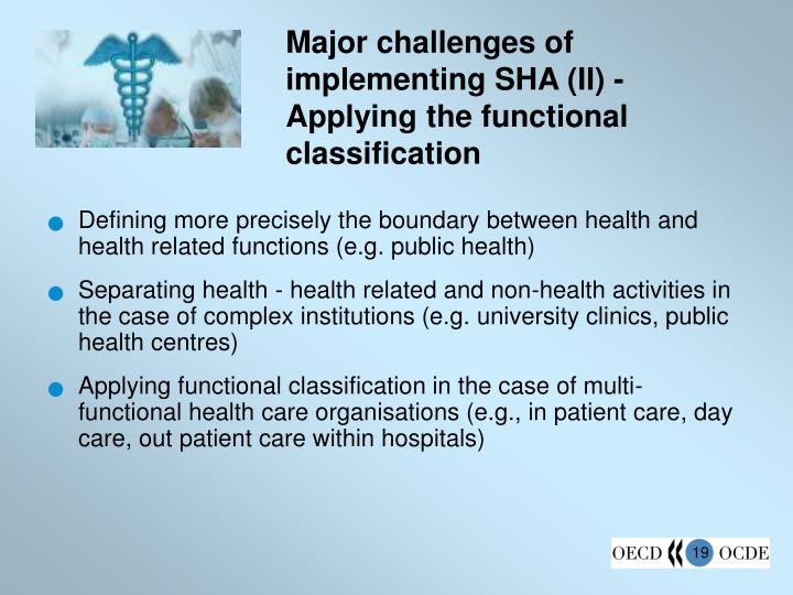 Major challenges of implementing SHA (II) - Applying the functional classification