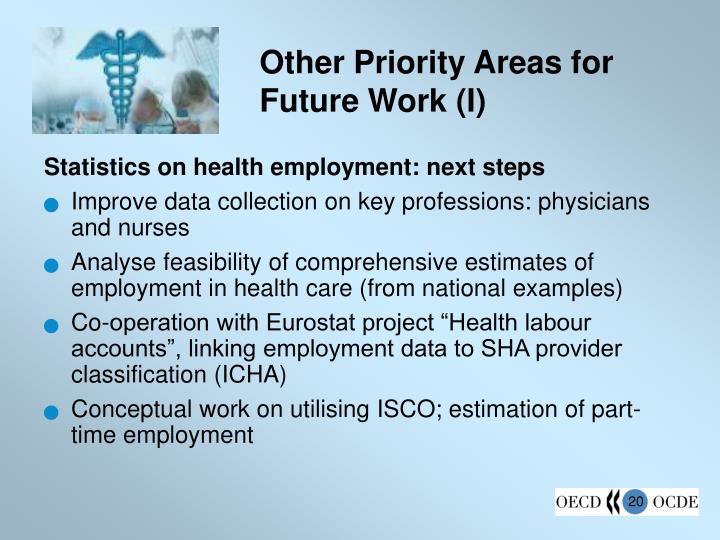 Other Priority Areas for Future Work (I)