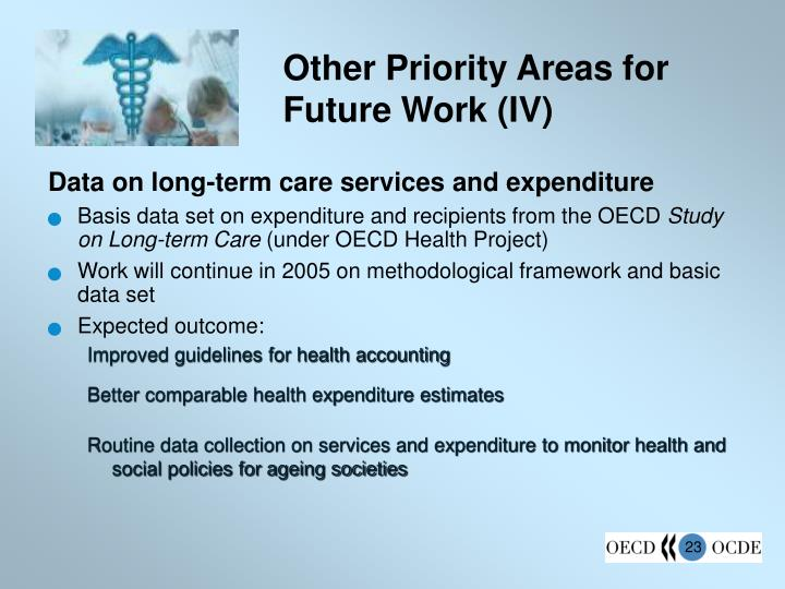 Other Priority Areas for Future Work (IV)