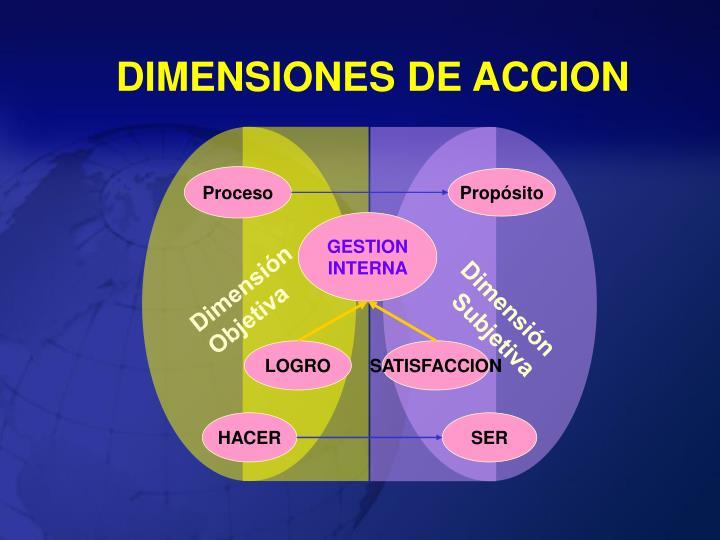 DIMENSIONES DE ACCION