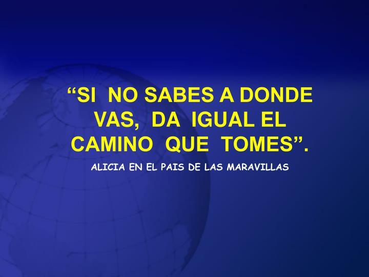 """""""SI  NO SABES A DONDE VAS,  DA  IGUAL EL  CAMINO  QUE  TOMES""""."""