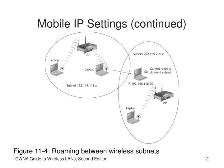 Mobile IP Settings (continued)