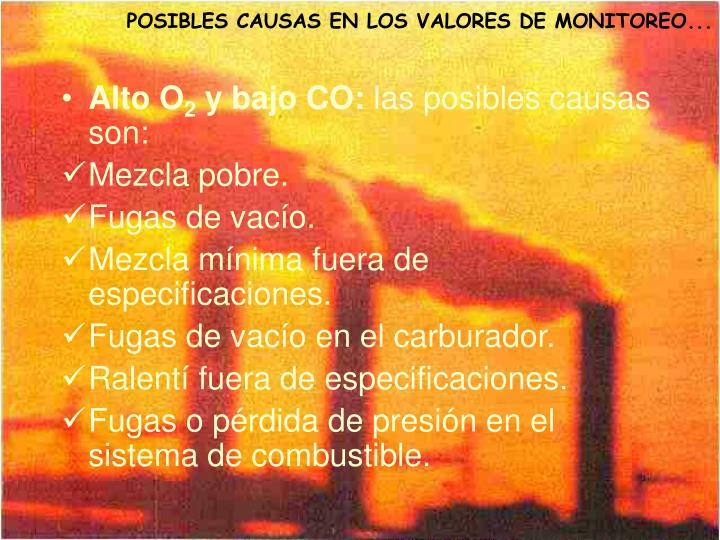 POSIBLES CAUSAS EN LOS VALORES DE MONITOREO...