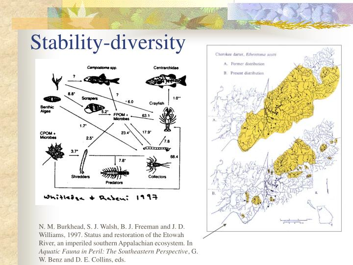 Stability-diversity