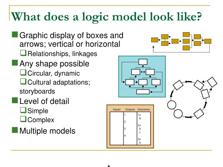 What does a logic model look like?