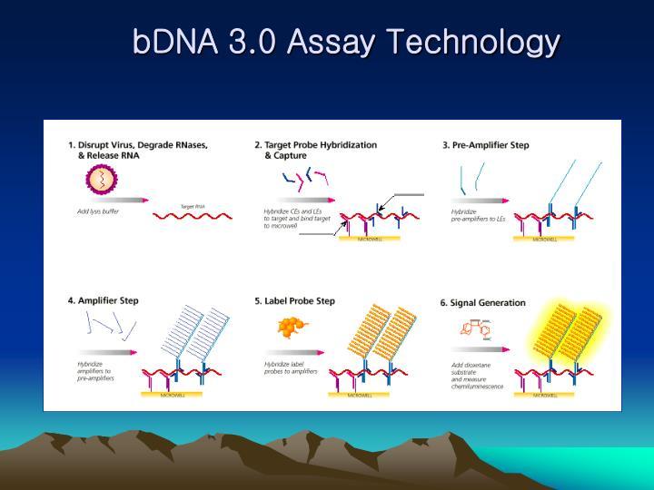 bDNA 3.0 Assay Technology