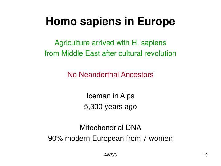 Homo sapiens in Europe