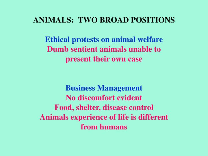 ANIMALS:  TWO BROAD POSITIONS