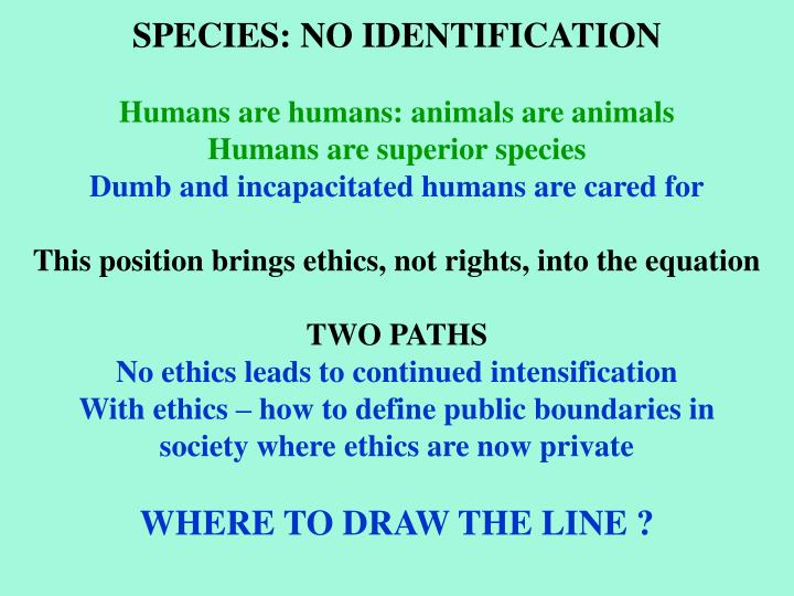 SPECIES: NO IDENTIFICATION