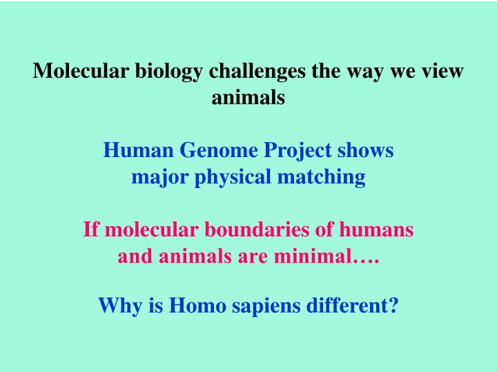 Molecular biology challenges the way we view animals