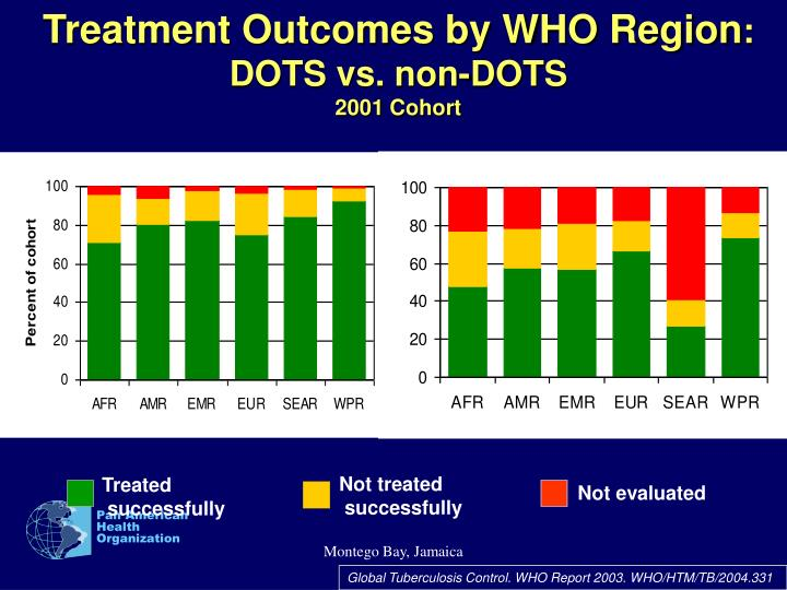Treatment Outcomes by WHO Region