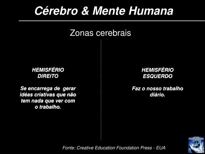Cérebro & Mente Humana
