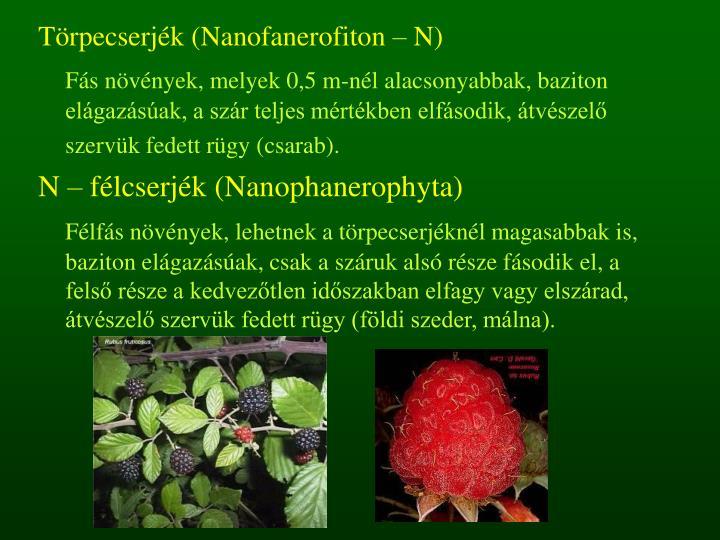 Törpecserjék (Nanofanerofiton – N)