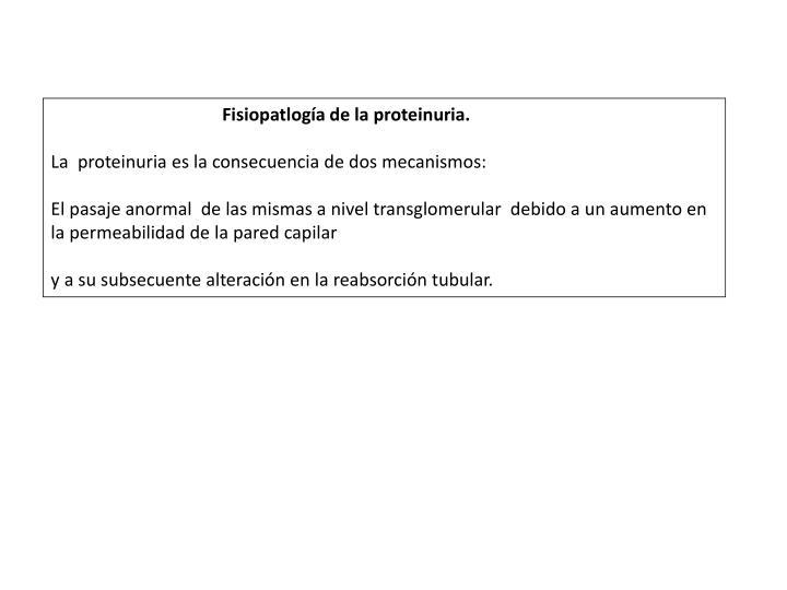 Fisiopatlogía de la proteinuria.