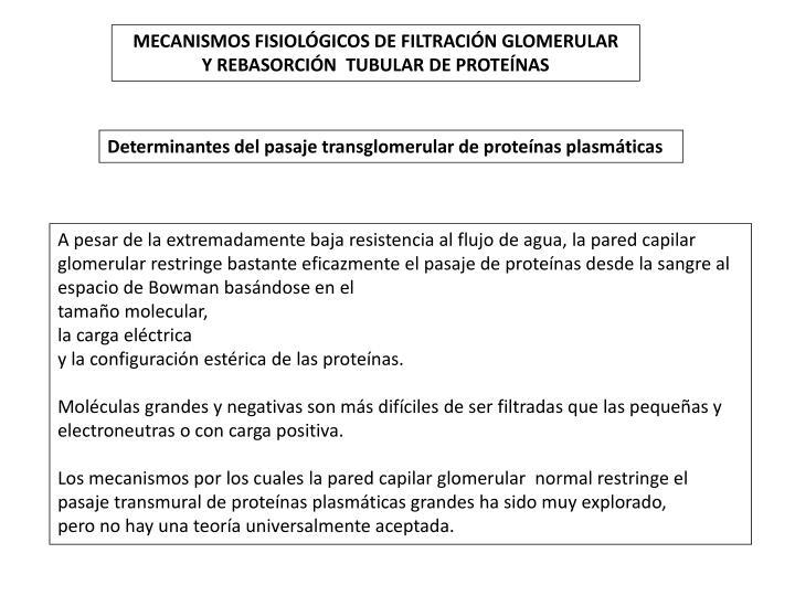 MECANISMOS FISIOLÓGICOS DE FILTRACIÓN GLOMERULAR