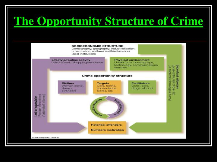 The Opportunity Structure of Crime