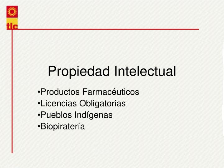 Propiedad Intelectual