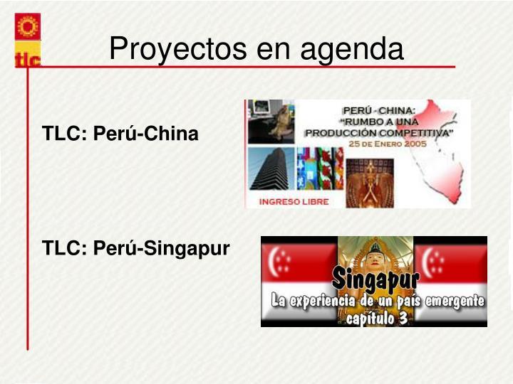 Proyectos en agenda