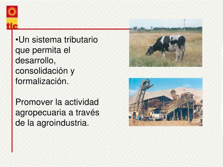 Un sistema tributario que permita el desarrollo, consolidacin y formalizacin.