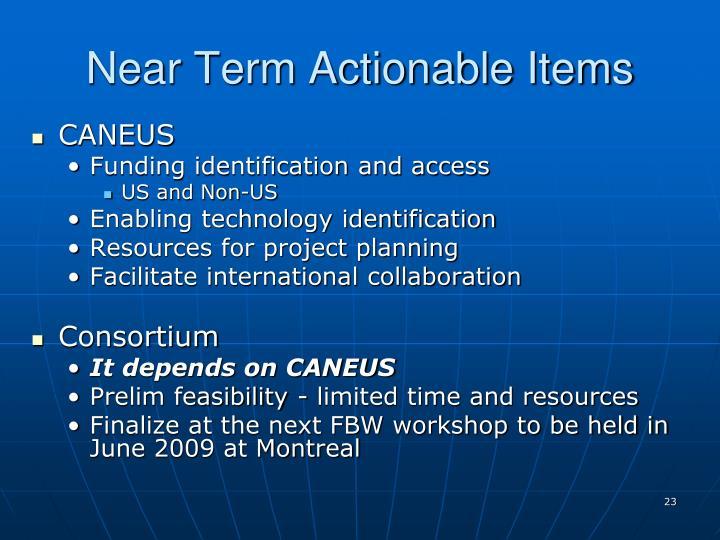 Near Term Actionable Items