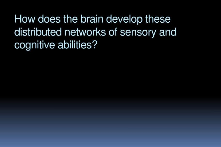 How does the brain develop these distributed networks of sensory and cognitive abilities?