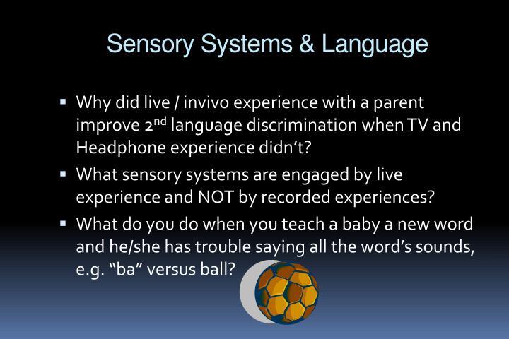 Sensory Systems & Language