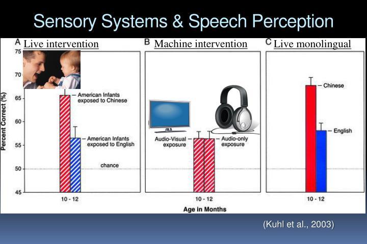 Sensory Systems & Speech Perception