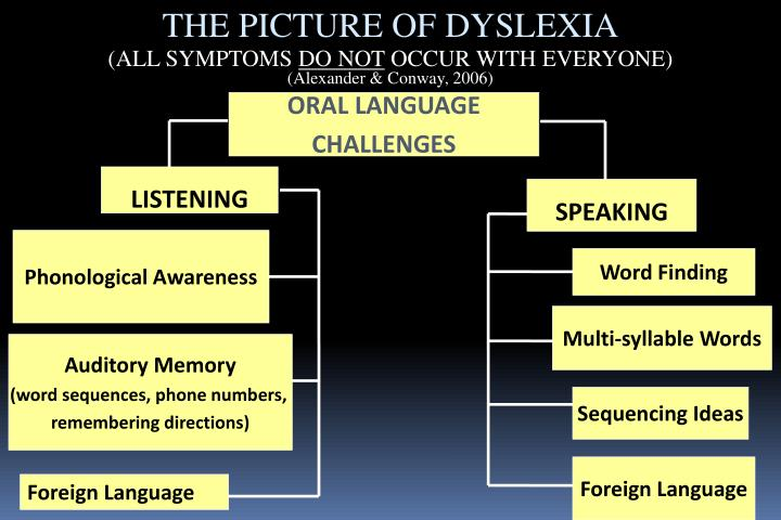 THE PICTURE OF DYSLEXIA