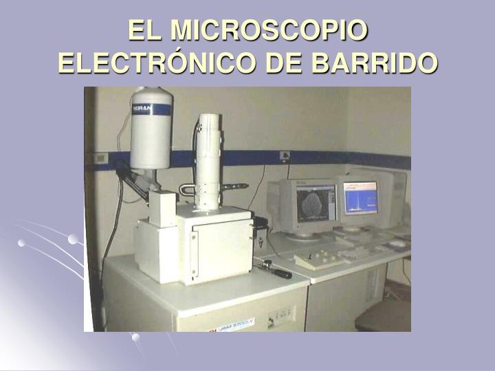 EL MICROSCOPIO ELECTRÓNICO DE BARRIDO