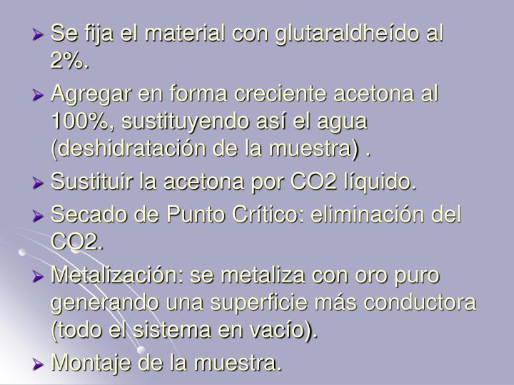 Se fija el material con glutaraldheído al 2%.