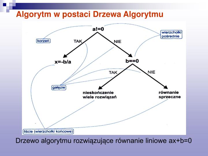 Algorytm w postaci Drzewa Algorytmu