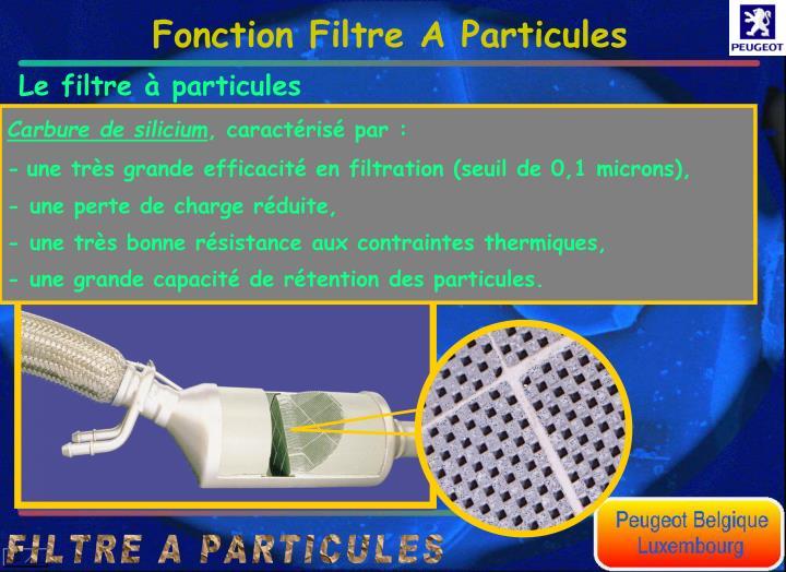 Le filtre  particules est une structure poreuse comprenant