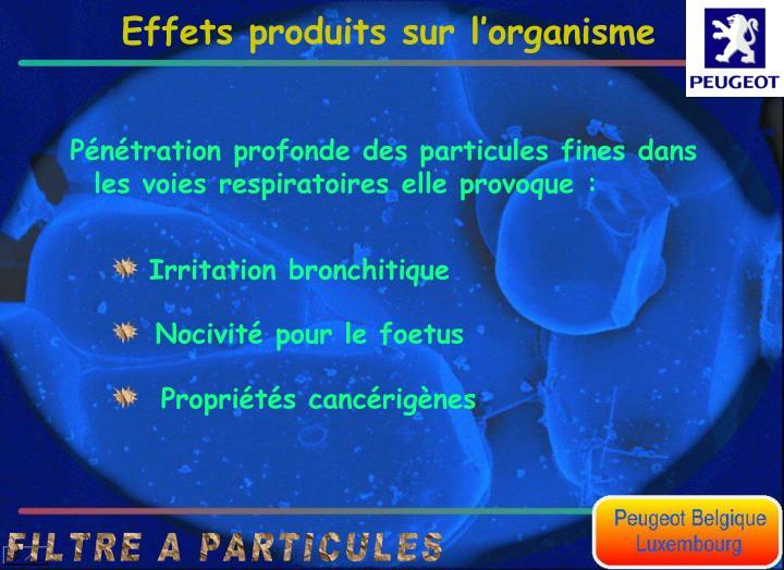 Irritation bronchitique