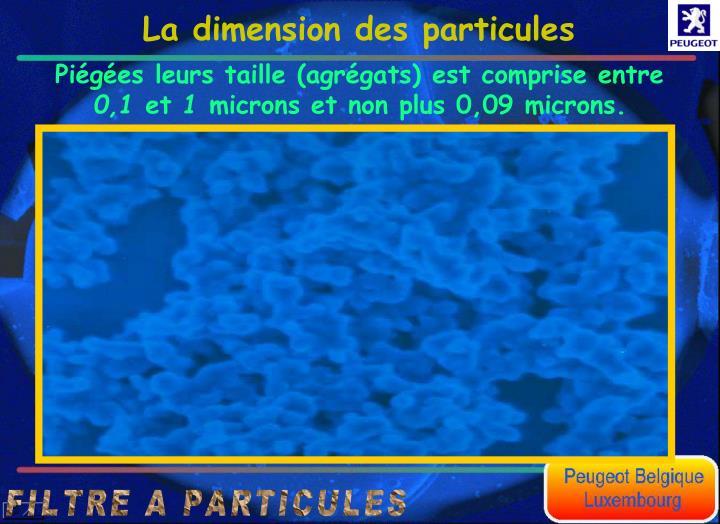 La dimension des particules