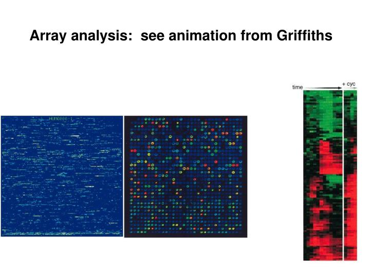 Array analysis:  see animation from Griffiths