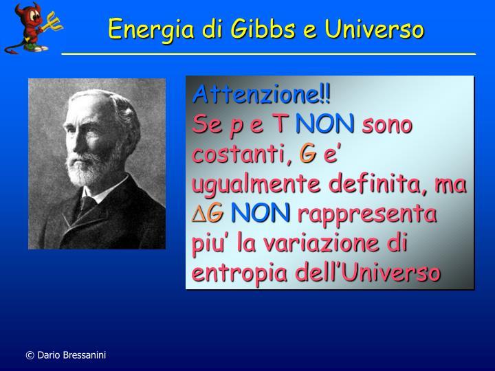 Energia di Gibbs e Universo