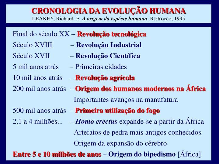 CRONOLOGIA DA EVOLUÇÃO HUMANA