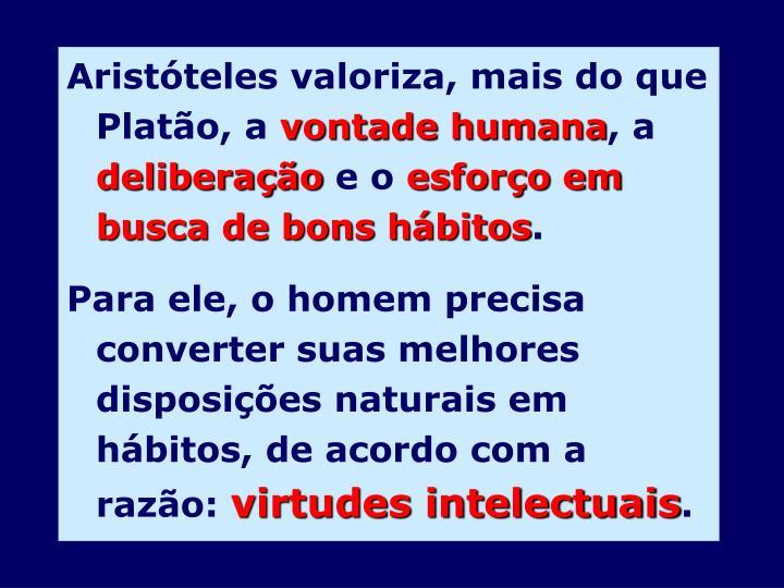 Aristóteles valoriza, mais do que Platão, a