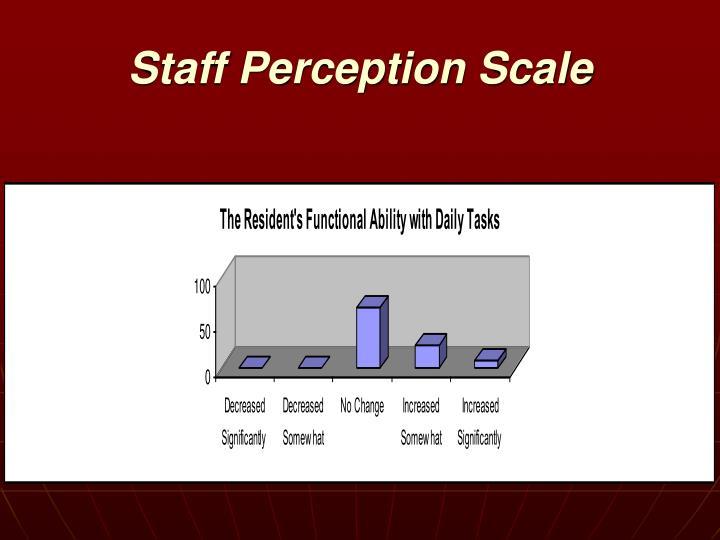 Staff Perception Scale