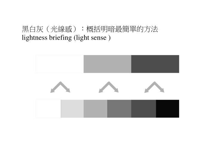 黑白灰(光線感):概括明暗最簡單的方法