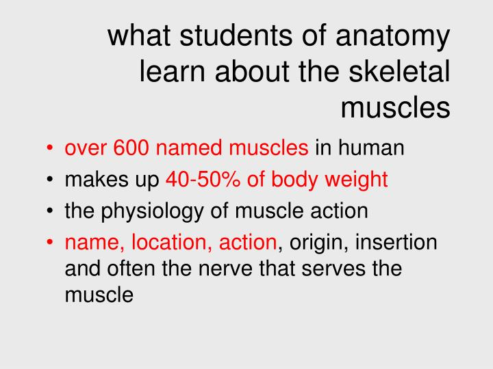 what students of anatomy learn about the skeletal muscles