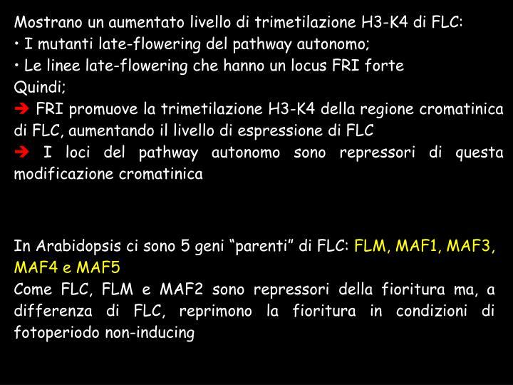 Mostrano un aumentato livello di trimetilazione H3-K4 di FLC: