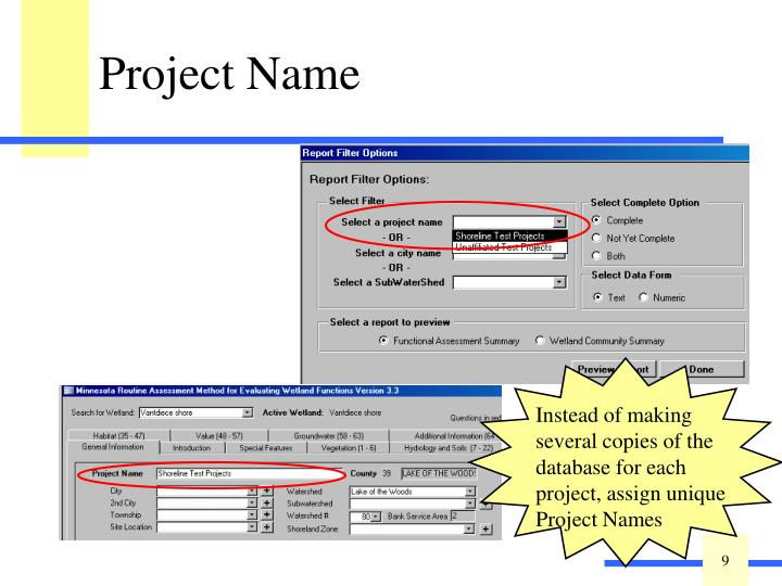 Assigning a Project Name is optional.
