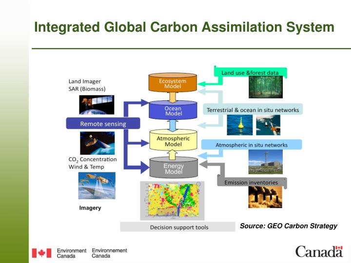 Integrated Global Carbon Assimilation System