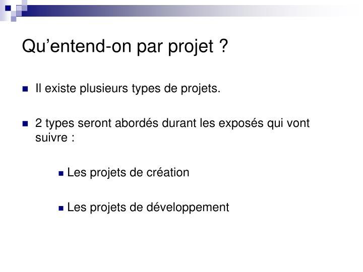 Qu'entend-on par projet ?