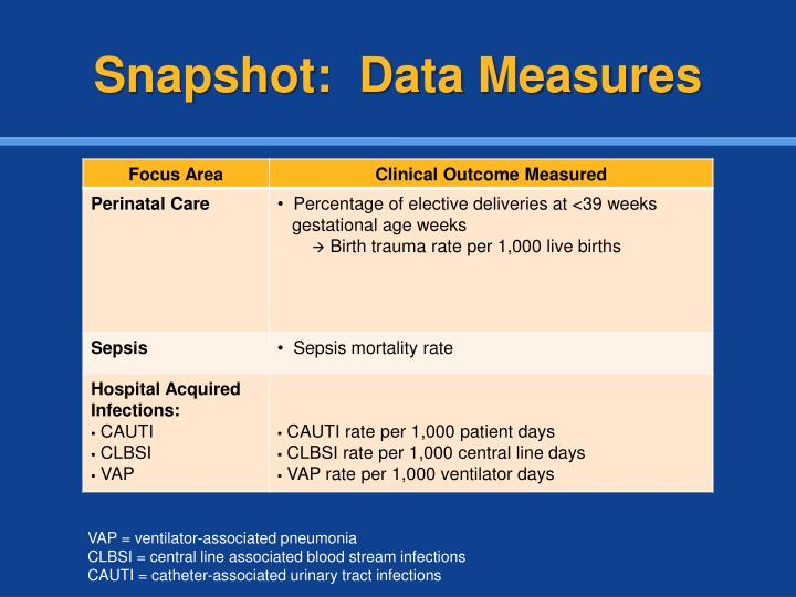 Snapshot:  Data Measures